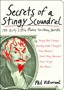 Secrets of a Stingy Scoundrel - Jacket Art